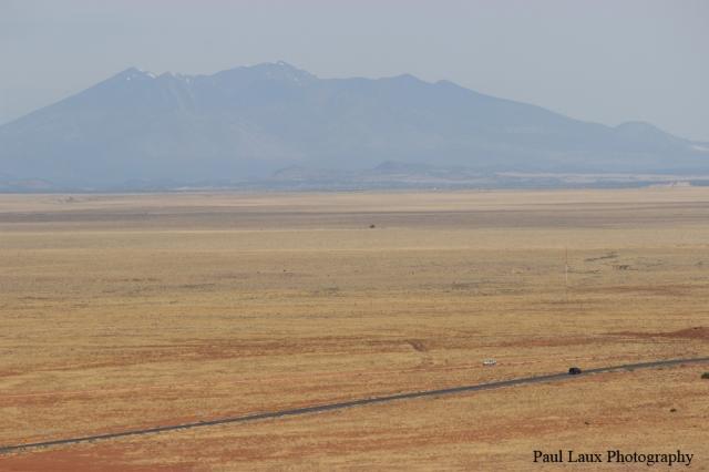 Man Cut Desert