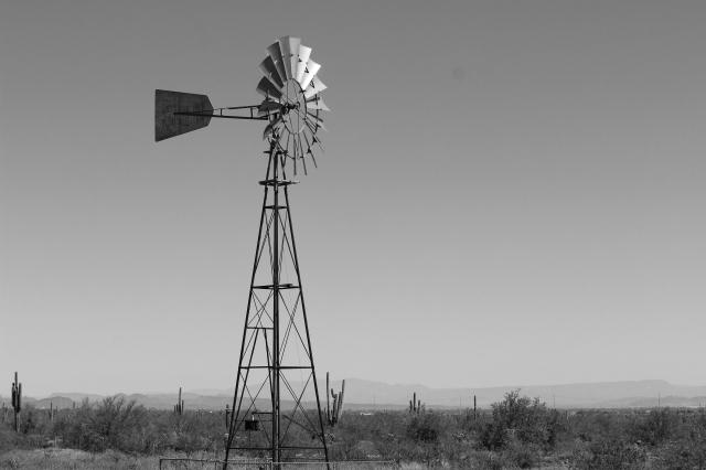 Windmill BW Final